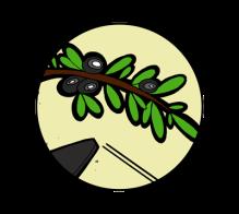 icone-jb-mus-steven-cigale