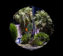 icone-photographie-photographe-jb-mus-toulon-paradis-artificiel
